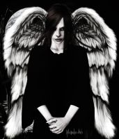 Dark Angel by Mirandus-Arts