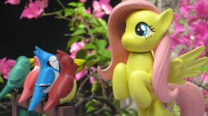 Thanks from Fluttershy by renegadecow