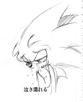 sonic cry47 tear strained face by bbpopococo