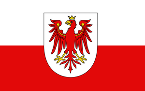 The `Old Tyrolian Flag`` with crowned Eagle by YulianEruannoNoldor