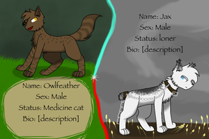 Featherclan cat ref sheet by silverwing2254