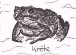 Kroete by Ka-Kind