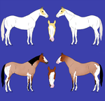 Stock Horse Point Adoptables(5pts Each!) by Lycious