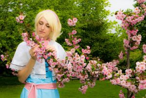 Alice Margatroid 3 - Checking the flowers by simakai