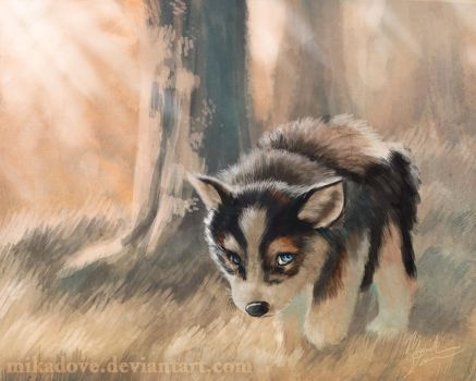 Half-Wolf pup by mikadove