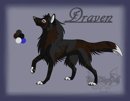 Draven Reference by BlackRidgeWolf