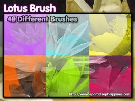 Lotus Flower Photoshop Brush by retzwerx