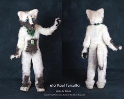 Fursuit Koul first by 2078