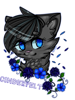 Cinderpelt by PurpleNightTheKitty