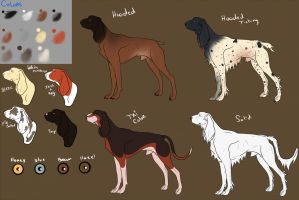 Temp Breed sheet for: Cactus Hound by Kach-22