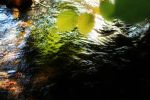 .colorful.water. by AnthropoPhobicA