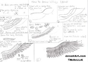 How to draw wings (bird) by NiReLLiK