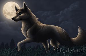 By The Light Of The Moon by ShadyMutt