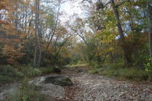 Dry Creek Bed by CentiumCuspis