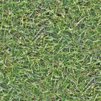 Seamless high res grass texture by hhh316