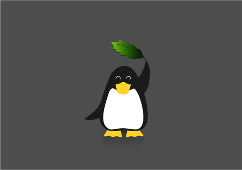 linux mint by loopin
