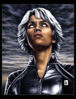 Halle Berry, Storm by louissollune