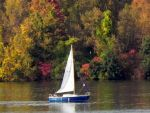 Fall Sailing by dmguthery