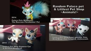 Random Palace Pet and LPS Animals by Vesperwolfy87