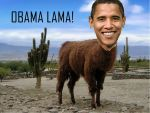 OBAMA LAMA by xX-GrEyWoLf-Xx