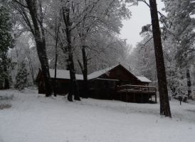 Home in the Snow - 2012 by Gianni36