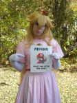 Missing Mario by LittleMarin
