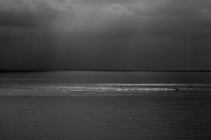 Black and white morning by ketoo
