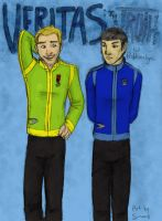 The Truth About Kirk And Spock by Sanwall