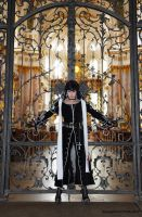 The gate by Isadorada