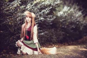 connichi 2012   2 by derlevi