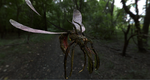 Zbrush demonic insect by DragonisAris