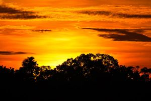 Amazon sunset 2 by wildplaces