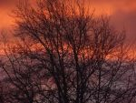 Fire Skies by xXS-c-e-n-eXx