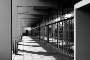concrete and glass by spsera