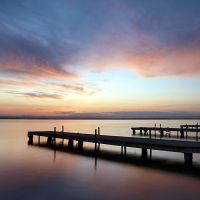 albufera. which one by janocha