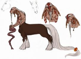 centaur character design - the shaman - by MoonLightRose17