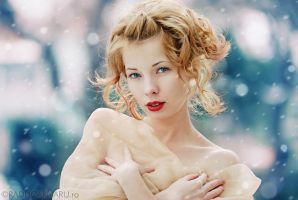 Winter's Beauty by roadkill2k5