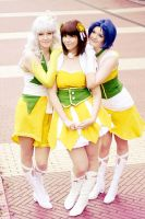 Sunflower Trio by y-o-s-s-i