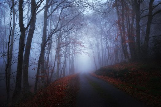 Obscure End by FlorentCourty