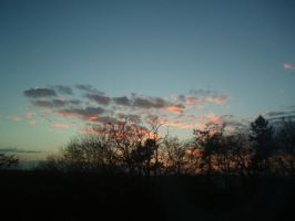 The view from my window 7 by Scapes-club