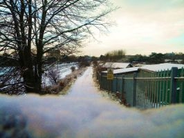 Snow Path by Glyjah