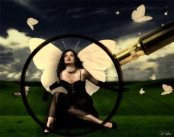 Glamour butterfly in my sights by Iuliia