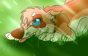.:Puppy!Judith in the Morning Rain:. .:DotW:. by Wolf-Chalk