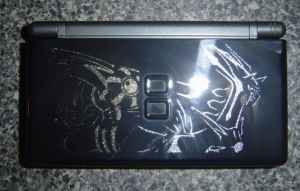My Limited Edition DS Lite by AnimeFanaticWilly