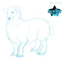 Animal of the Day: Sheep by Silberry