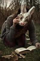Mad as Rabbits. II by Lyndzie
