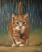 Kote Under the Rain by IlonaPankevich