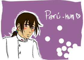 Profession . Peru-kun by vorabend-taboo