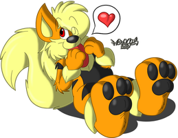 Cute Puppy by Marquis2007