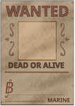 OPRP: Wanted Poster Blank by iSindri